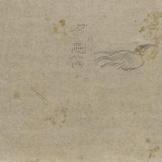 날개 초벌화