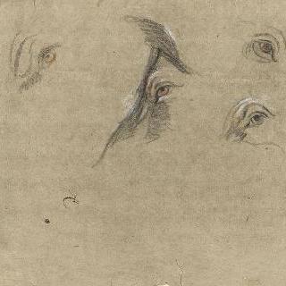 동물들의 네 개의 눈 습작