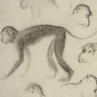 7마리의 원숭이