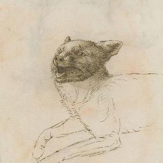 누워있는 고양이의 앞부분과 벌린 입