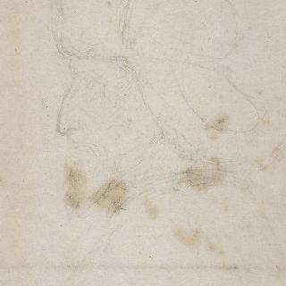 룩셈부르크의 모자를 쓴 시지스몽 황제의 좌측 방향의 상반신 옆모습