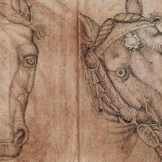 우측 4분의 3 방향의 말의 두 개의 머리, 정면의 말과 마구가 달린 말