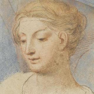 좌측 방향의 금발 젊은 여인의 두상
