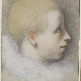 오른쪽을 향한 머리를 짧게 깎은 어린 소년의 두상 옆 모습