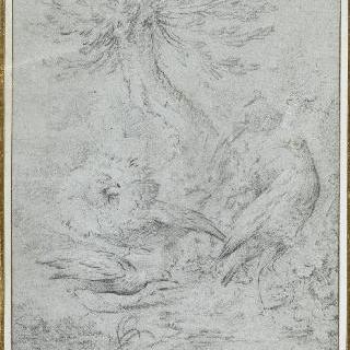 나무 부근의 네 마리의 새