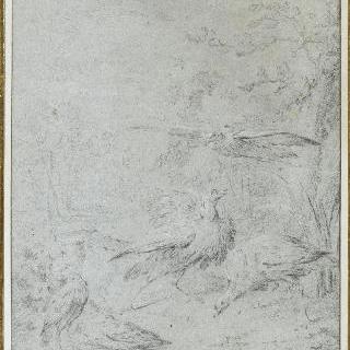 풍경 속 다섯 마리의 새