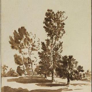 풍경 습작. 평야의 다섯 그루의 나무