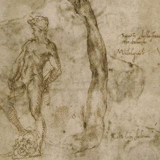 승리의 다윗 왕 거대 동상 습작과 왼쪽 팔 습작