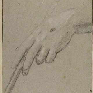 위에서 본 왼손. 손 위에 천연두 자국이 있고 막대기를 쥐고 있다