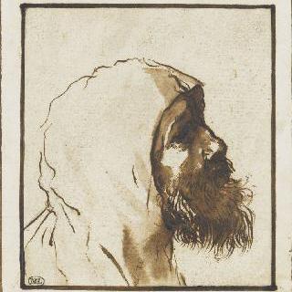 수염난 남자의 두상 : 성 프랑수아 드 폴