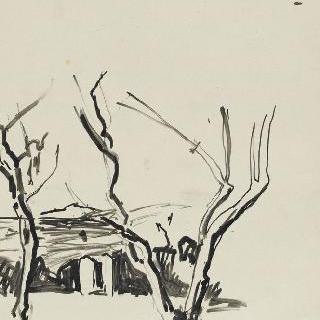 두 그루의 나무가 있는 풍경