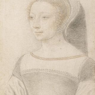 베아트리스 파쉐코 다스칼라나의 초상 (1510-1555), 앙트르몽 백작부인