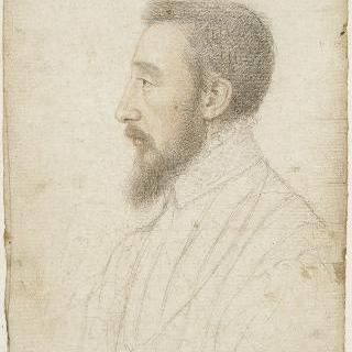 앙리 2세, 프랑스 왕 (1519-1559)