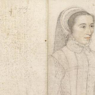 르네 드 리웨, 루이 드 쌩트 모르의 부인, 네슬 후작부인 (1524-1567)