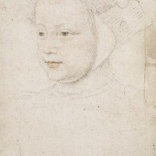 앙리 드 프랑스, 오를레앙 공작, 장래 앙리 2세 왕 (1519-1559)