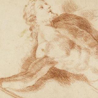 오른손으로 물체를 잡고 있는 수염난 남자의 습작, 나체의 토르소