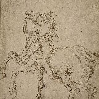 뒷발로 서 있는 말을 잡고 있는 나체 남자
