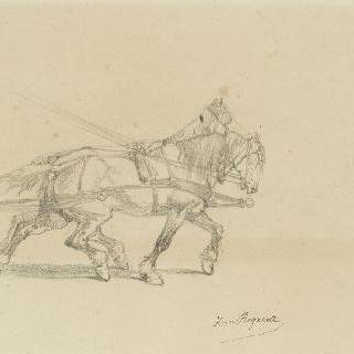 한 쌍으로 매어진 두 마리의 말들 : 세브르의 마차
