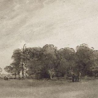 큰 나무들로 둘러싸인 잔디밭