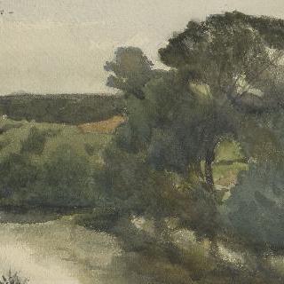 초목의 강
