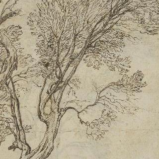 길쭉한 두 그루의 나무 습작