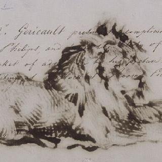 누워있는 사자
