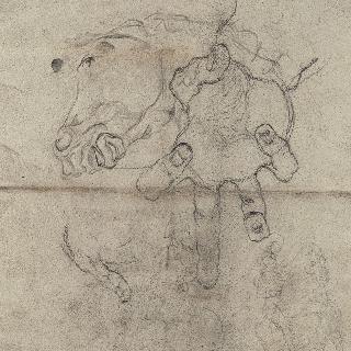 말의 두상, 경련을 일으키는 손
