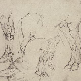 말의 세 뒷부분과, 세 앞부분 습작