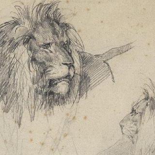 사자의 두 두상