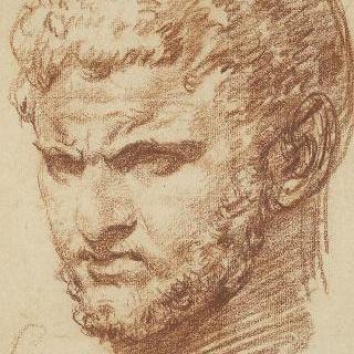 로마 흉상풍의 좌측 4분의 3상의 수염 난 남자의 정면 얼굴 (카라칼라)
