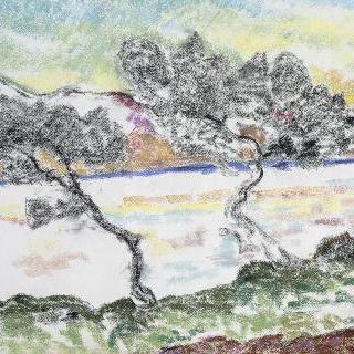 마르탱 곶의 소나무들