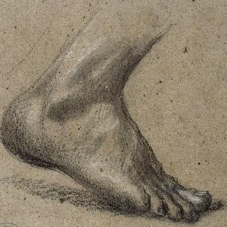 오른발 습작