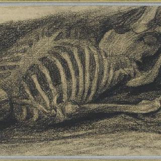 누워있는 해골
