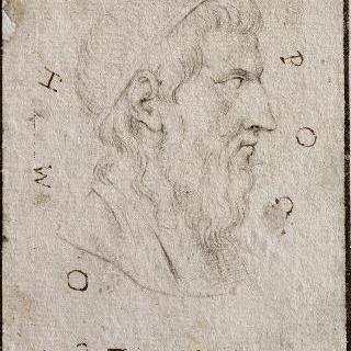 호메로스의 어깨가 보이는 측면 두상