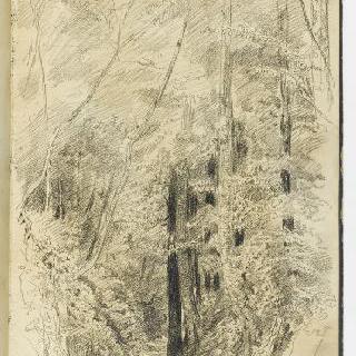 앨범 : 팔레즈의 숲 속 그림