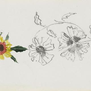화첩 : 한 송이 꽃 습작