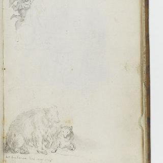 앨범 : 날개달린 인물 크로키 : 두 마리 곰 크로키