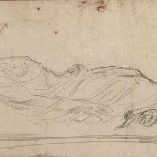 침대 위에 누워있는 죽은 여자