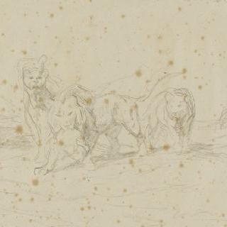 앞으로 걸어가는 사자 한 마리와 암사자 두 마리