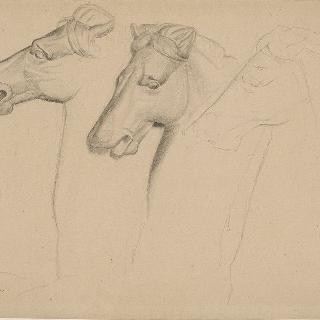 말의 세 개의 머리 : 고대풍의 복제화 : 로마 티투스 개선문의 부조