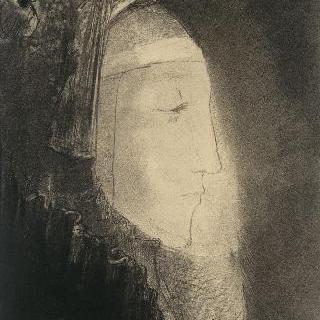 밝은 부분의 측면 : 베일을 쓴 여인의 측면