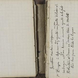 1865-1870년 경의 크로키 화첩 : 백지 : 수사본 주석