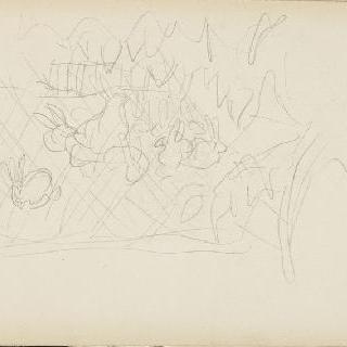 나뭇잎과 토끼 크로키