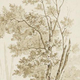 앨범 : 퐁텐느블로 숲 풍경