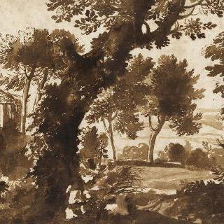 나무들 뒤로 신전이 있는 풍경
