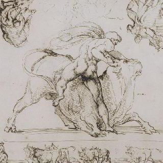 헤라클레스와 황소