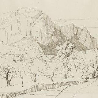 벽으로 분리되고 나무가 심어진 평야 : 안 쪽의 암석 투성이의 산