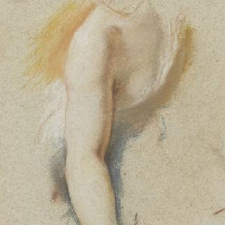 여인의 두상과 팔