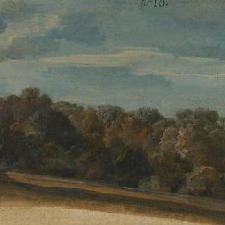 구름이 있는 하늘의 가을 숲