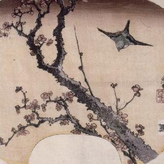 꽃이 핀 벚나무와 꾀꼬리